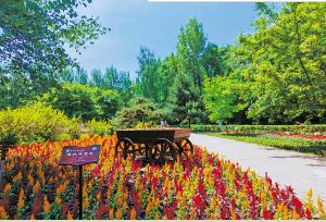 端午期间黑龙江森林植物园将提前开园免费入园