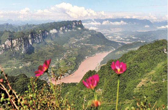 宜昌夷陵金刚山的满山杜鹃花吸引游客纷至沓来