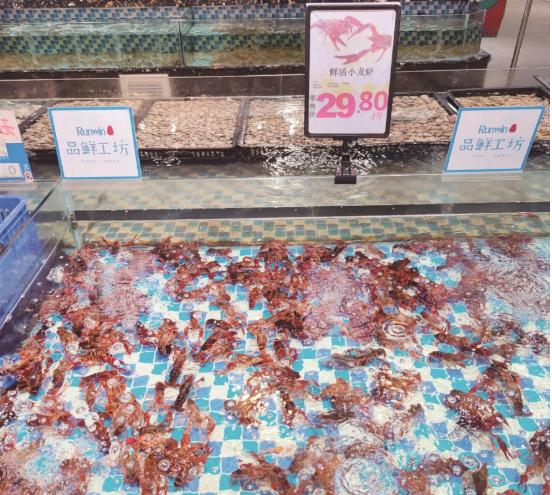 大规格虾半月涨价四成 夏日消费旺季促进提价