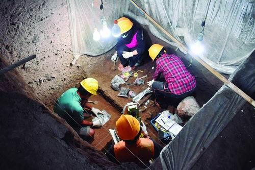 对古人类头骨基因组分析发现一个前所未知的古人类血统