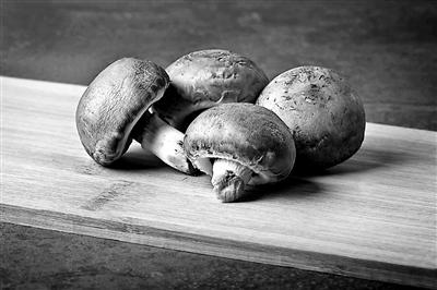 蘑菇是否能够富集重金属?我们还能不能吃蘑菇?