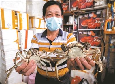 广州黄沙水产市场大闸蟹等货量充足 价格和往年相比较为平稳
