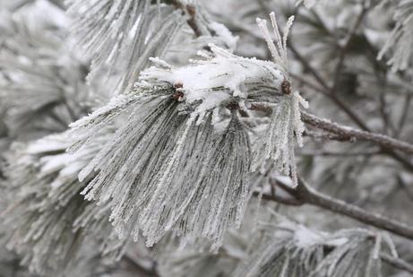 雪后的南阳老界岭景区银装素裹 景区道路和游览步道畅通