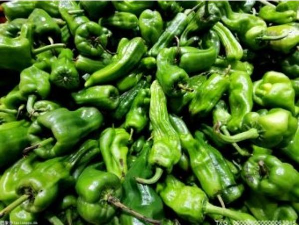 蔬菜价格迎来持续上涨情况 是什么原因导致的?